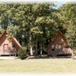 Gabby's Cabins Affordable Pet Friendly Cabins In Helen